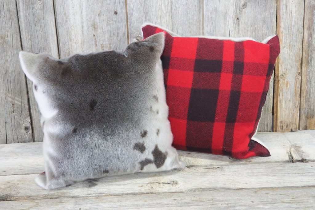 Seal cushion